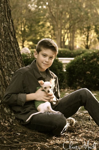 A Boy and His Dog